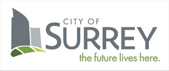 Surrey CCTV Instalaltion Services