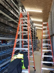 step ladder CCTV in warehouse